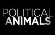 Bravo Acquires Big Buzz Event Drama POLITICAL ANIMALS