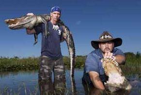 Crocodiles Rock! GATOR BOYS Wrestle, Catch and Save Florida's Alligators