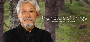 Takaya: Lone Wolf to Premiere on CBC's The Nature of Things