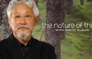 David Suzuki goes to the front lines of the climate revolt, in a revealing new documentary – Rebellion