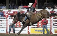 CBC Sports Brings All The Action Of The CALGARY STAMPEDE To Audiences in Canada and Around The World, July 5–14